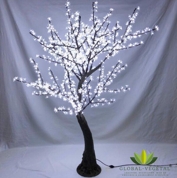 Location arbres lumineux pour décoration
