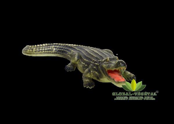 Location alligator décoration