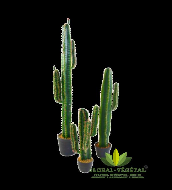 location cactus artificiels pour décoration