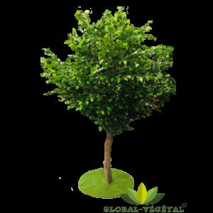 Location d'arbre artificiel ficus 2.50 mètres