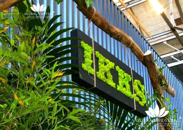 Logo plante végétale