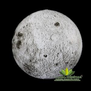 Location de lune gonflable géante