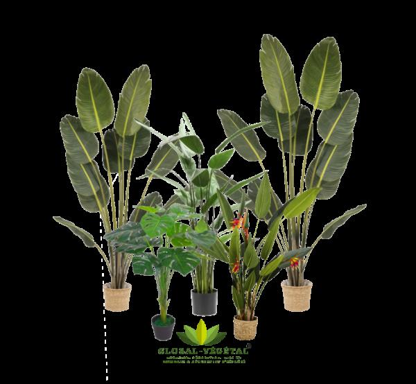 location de plantes artificielles pour décoration tropicale