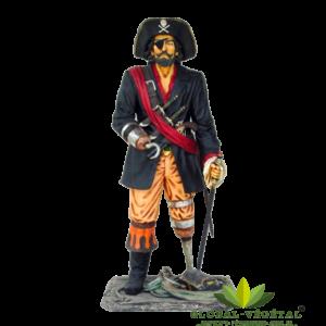 location de capitaine crochet pirates