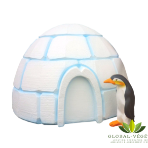 Location d'igloo de Noël