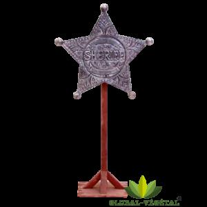 Location étoile du shérif géante
