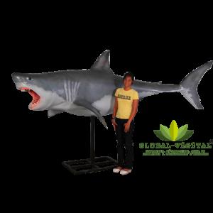 Location de requin géant
