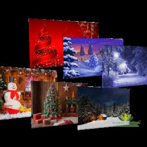 Location de fond imprimé thème Noël/Hiver