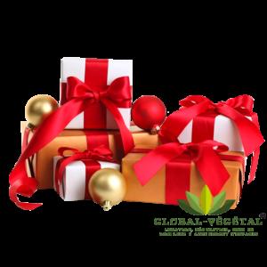 Location de cadeaux de Noël