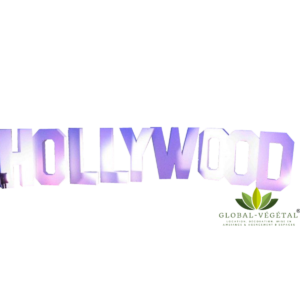 Location de lettres géantes « Hollywood »