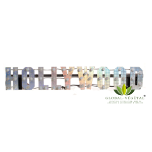 Location de logo « Hollywood » lumineux