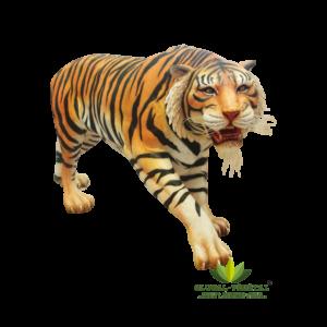 Location de Tigre en résine