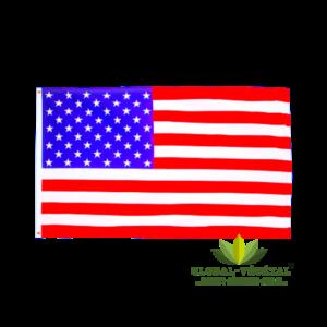 Location de drapeau américain