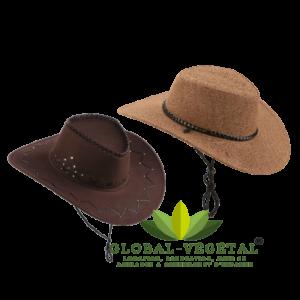 Location de chapeau de cow-boy