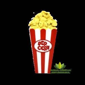 Location de boîte de pop corn géante
